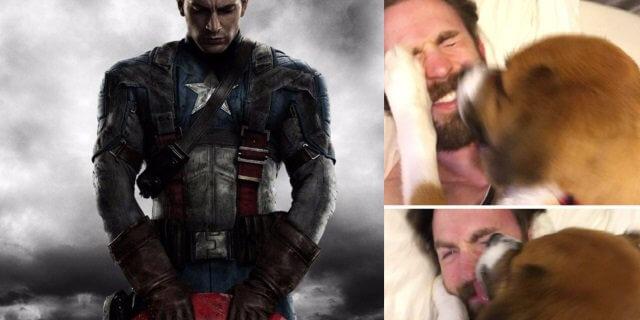 Capitán América y su perro Dodger