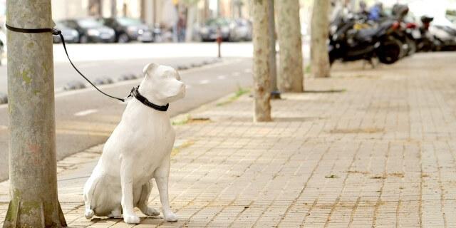 Estatua de perro de hormigón