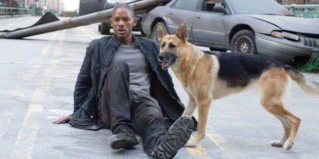 Will Smith y su perra Sam en Soy Leyenda.