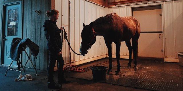 Como ensillar un caballo