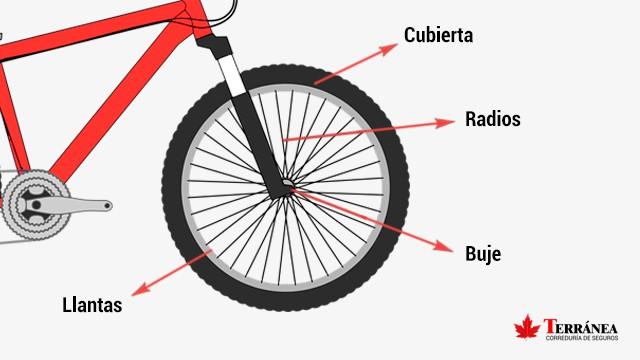 Partes de la bicicleta en las ruedas.
