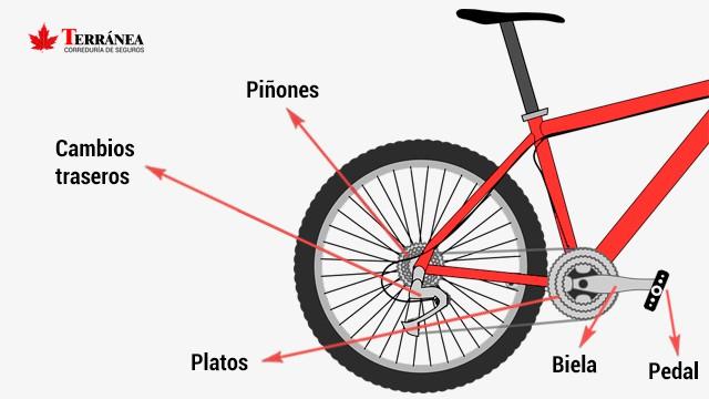 Partes de una bicicleta en la zona trasera