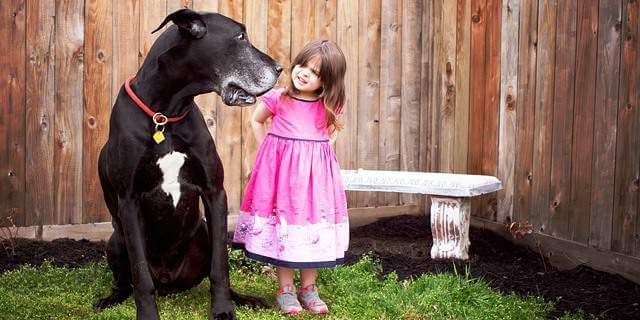 Una chica junto a un perro.