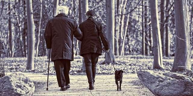Anciano con un acompañante y su perro.