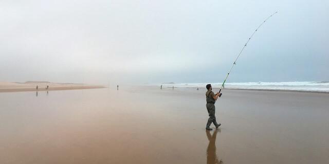 Tipo de pesca surf casting