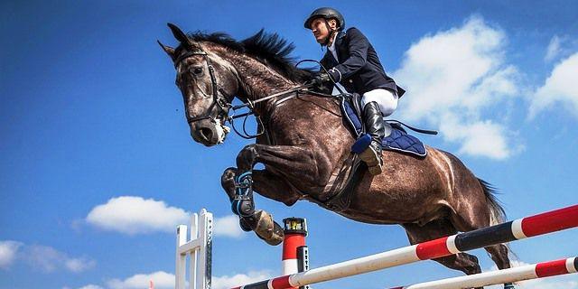 Jinete salta con un caballo en un concurso.