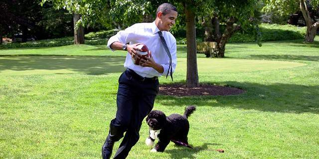 Obama jugando con su perro.