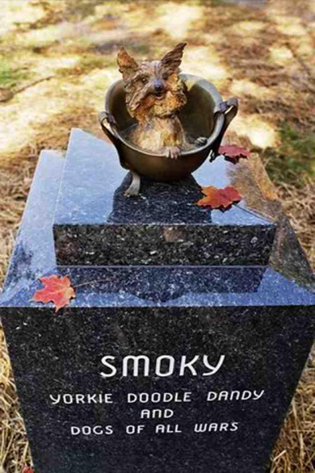Estatua en honor a Smoky.