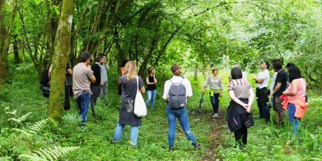 Baño de bosque organizado por DKV en País Vasco
