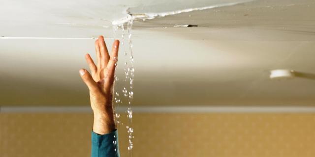 humedad en el techo causada por goteras que obligan a llamar al seguro para una reparación