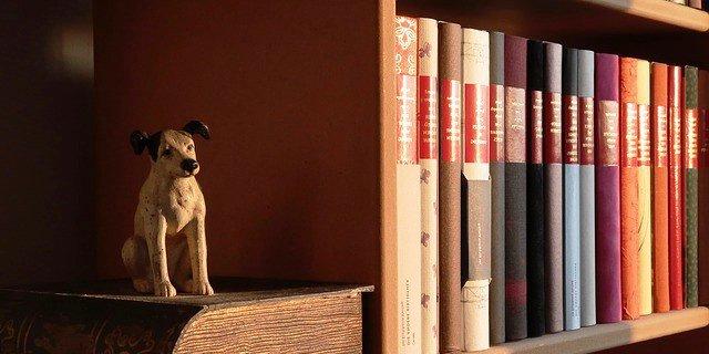 Lista con los mejores libros de perros.