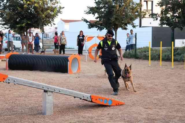 Exhibición canina en Villanueva de la Serena (Foto: Ayuntamiento).