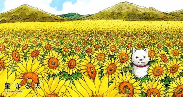 El perro guardián de las estrellas, el manga de Murakami.