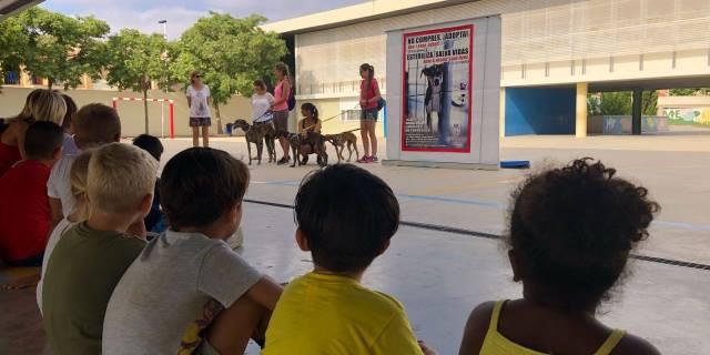 Charla sobre la importancia de la adopción de mascotas (Foto: Facebook).