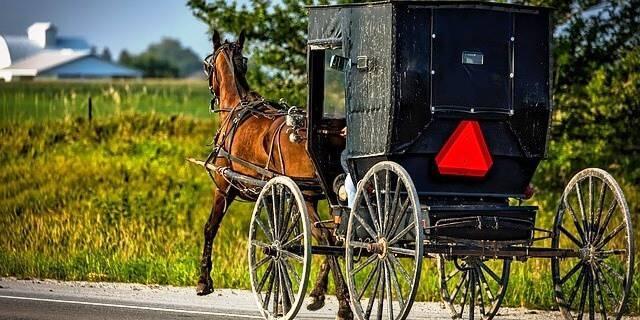 Amish Uber, otro medio de transporte.