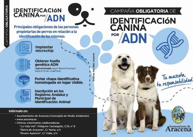 Díptico de la campaña de identificación de perros de Aracena (Foto: Ayuntamiento).