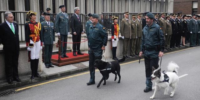 perros Guardia Civil Gijón