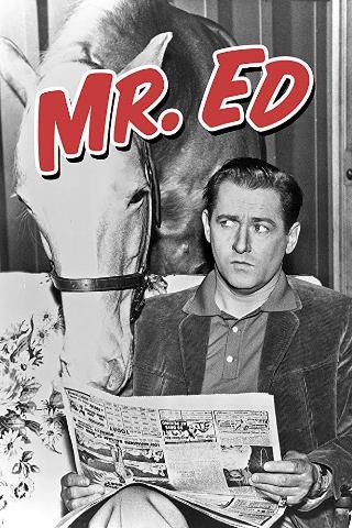 cartel de Mr Ed