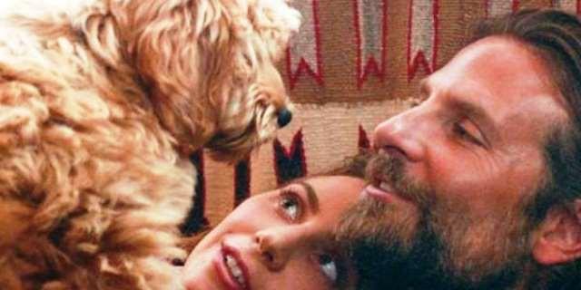 Bradley Cooper junto a su perro en la película 'Ha nacido una estrella'.