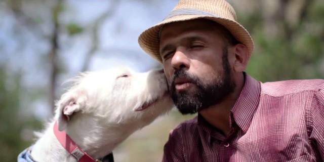 Dogs, la nueva docu serie sobre perros de Netflix.