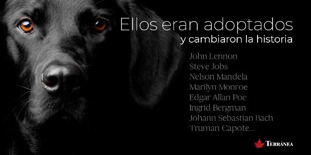"""""""Cambia la historia, adopta un perro"""""""