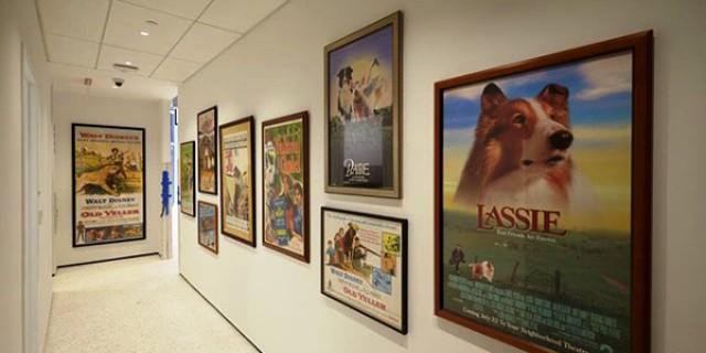El primer Museo del Perro abre en Nueva York