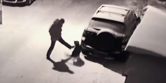 Un hombre da una patada a un perro y se cae