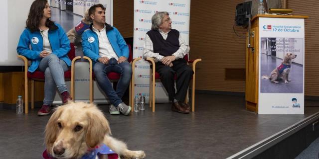 La terapia asistida con perros frente al alcoholismo.