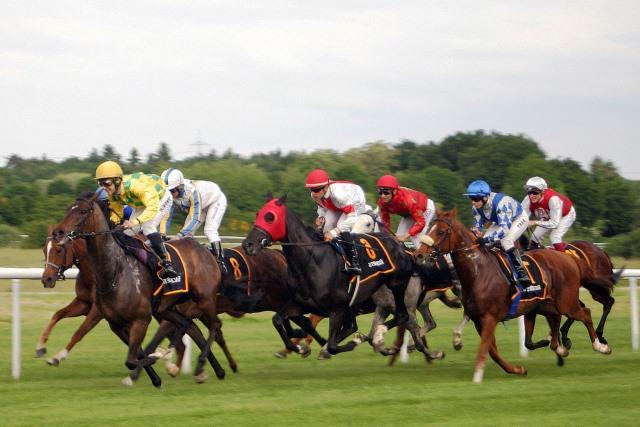 La gripe equina afecta a las carreras de caballos
