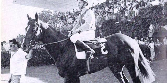 El Rubio de Oro y su caballo