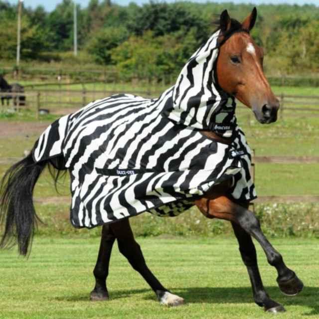 Por qué vestir a un caballo de cebra