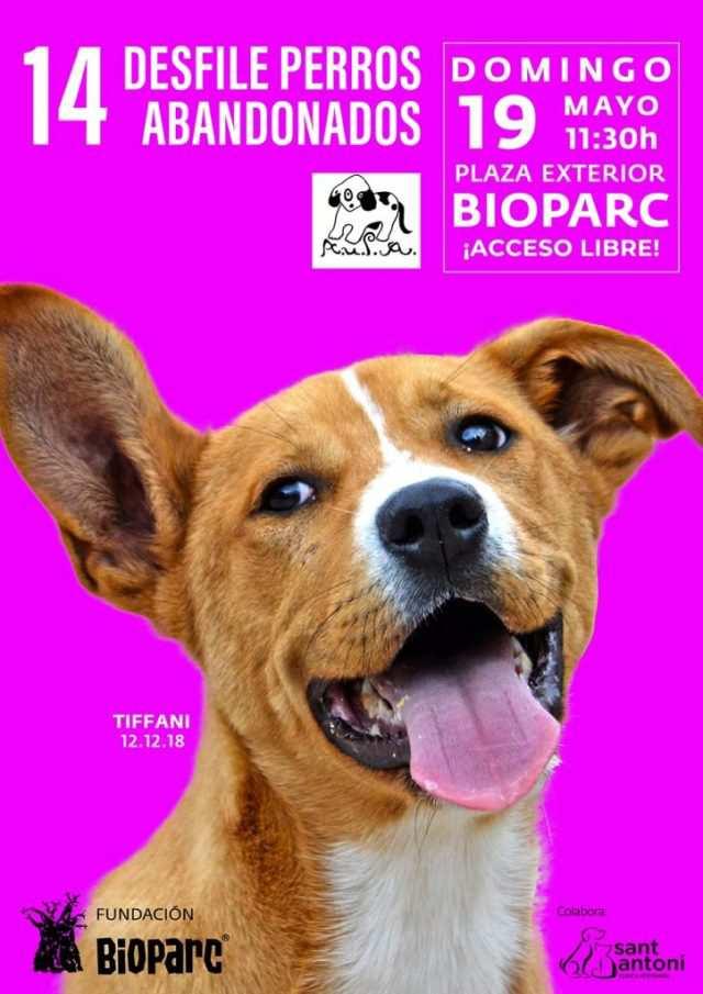 Cartel del evento solidario de Bioparc y AUPA.
