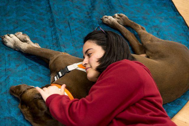 Estudiante con perro de terapia