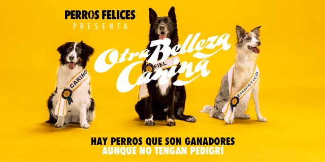 Concurso Otra Belleza Canina