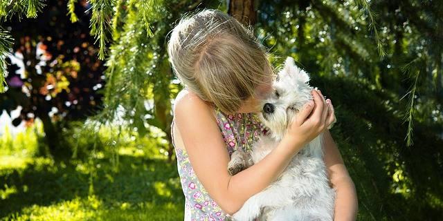 Chica abraza a perro