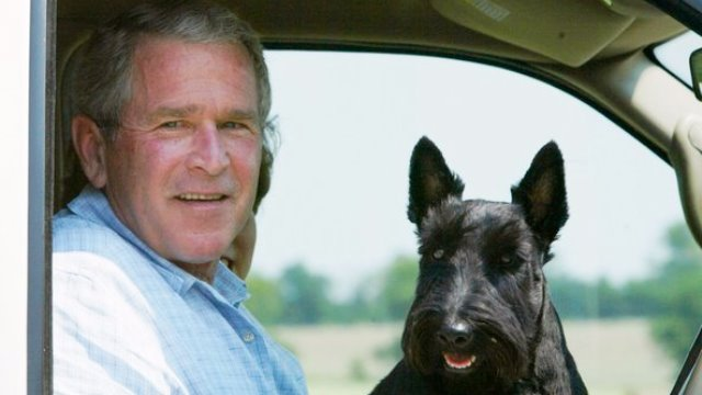 george bush con su perro