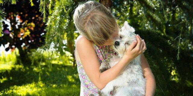 ¿Es peligroso besar a mi perro o que me lama?