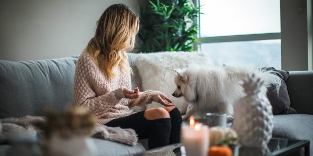 contacto entre mascotas y humanos por coronavirus