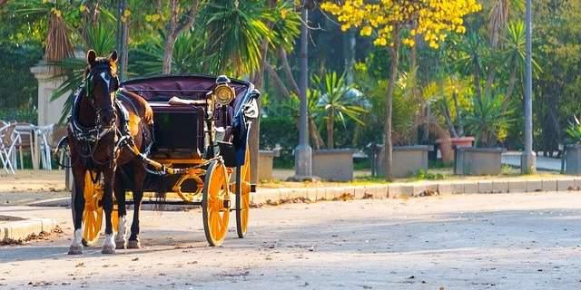 coche de caballo en Sevilla
