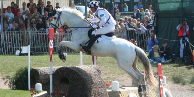 imagen caballo Holsteiner blanco saltando
