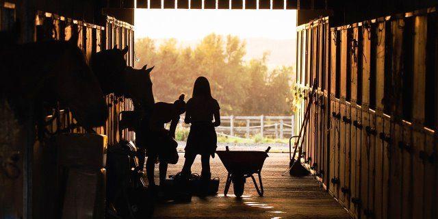 reencontrarnos con nuestro caballo