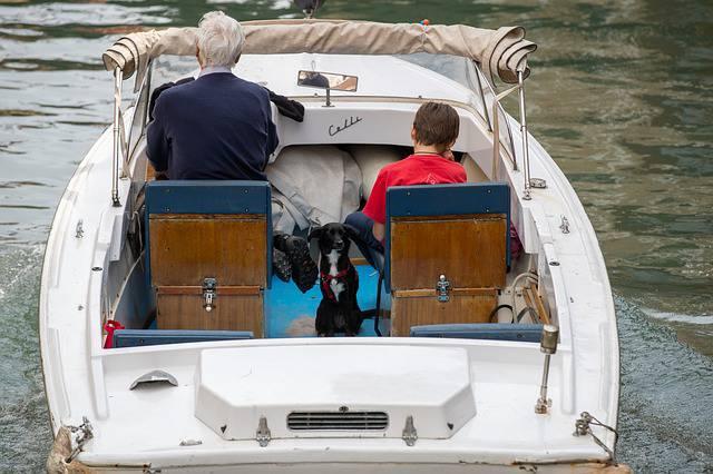 salir en barco con perro