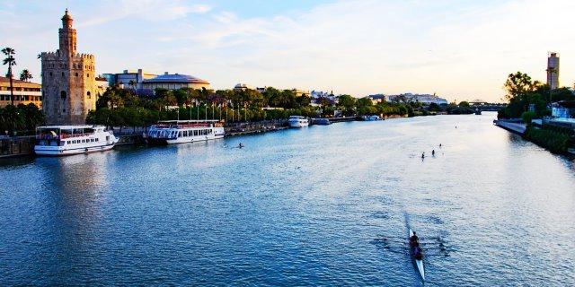 Más Fiebre del Nilo en la cuenca del río Guadalquivir