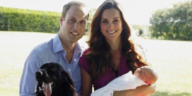 Lupo el perro del príncipe Guillermo y Kate Middleton