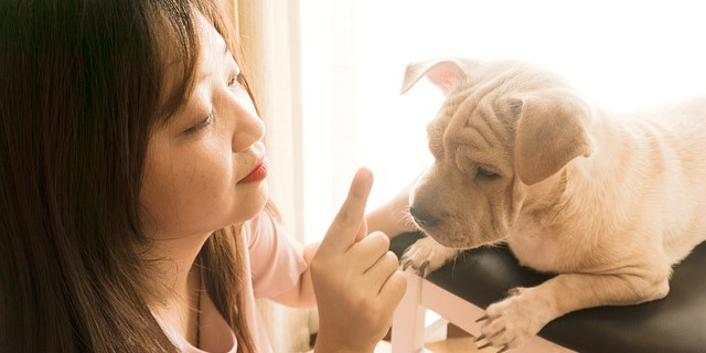 propietaria preocupada por la salud de su mascota