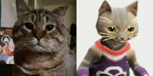 Gato inmortalizado en el videojuego Monster Hunter Rise